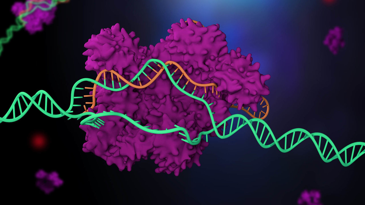 3D ilustrace zobrazuje, jak funguje systém CRISPR.