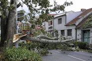 Pojišťovny už lidem zaplatily většinu škod po orkánu Herwart. Celkový účet po větrné smršti se mírně zvýšil na 1,45 miliardy korun