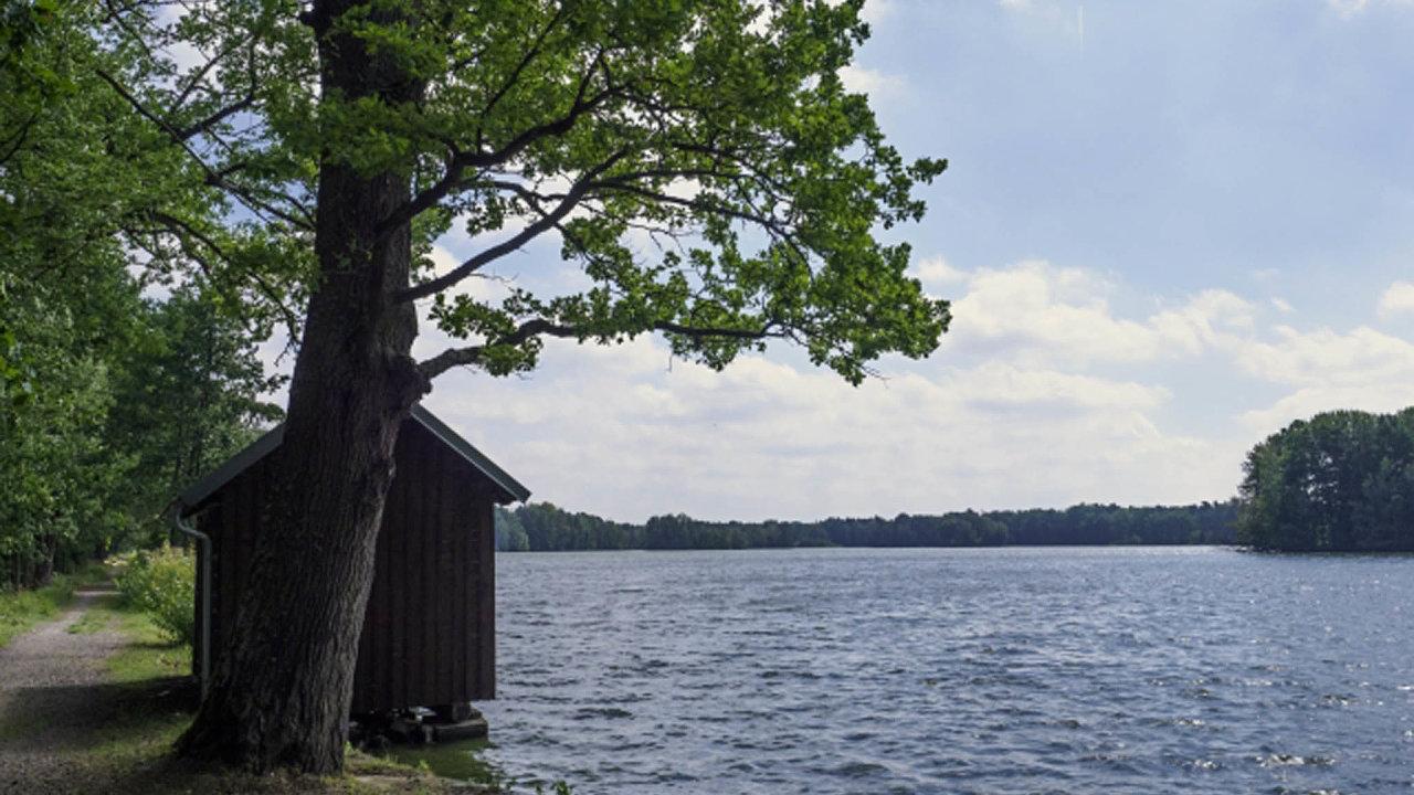 Rybářství Třeboň dostalo od Ústavního soudu novou naději, že získá zpět šest rybníků naČeskobudějovicku, které si nárokuje církev.