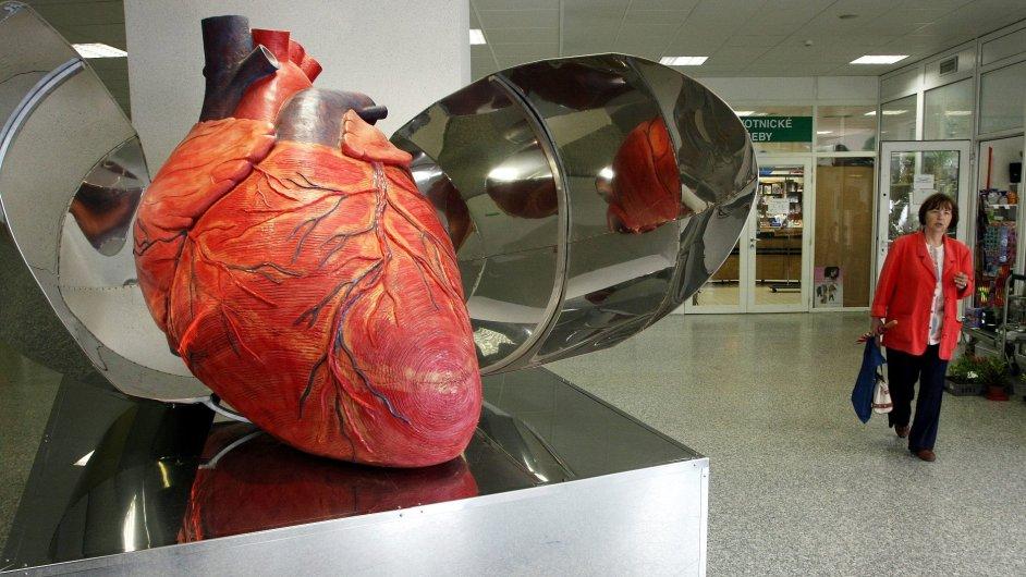 Srdce má své důvody, o nichž rozum nemá tušení.
