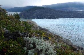 Nepřístupná Patagonie zpřísňuje ochranná opatření. Jako biosférickou rezervaci ji chrání i UNESCO