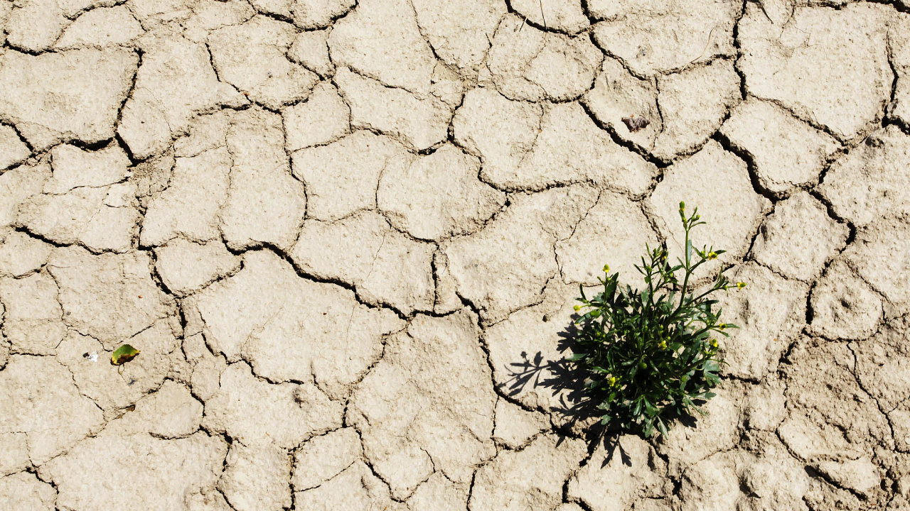 Sucho: jeden zprojevů postupující změny klimatu.