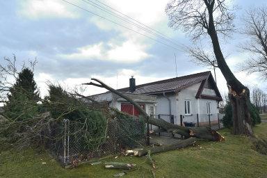 Bouře Sabine si v Česku vyžádala jednu oběť a několik zraněných. Musely být uzavřeny některé školy