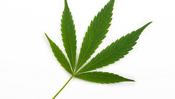 Marihuana. Ilustra�n� foto