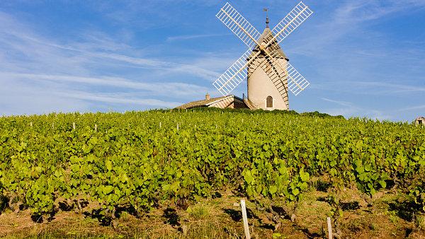 Podle francouzského vinařského zákona se víno z kraje Beaujolais smí prodávat od třetího listopadového čtvrtku.