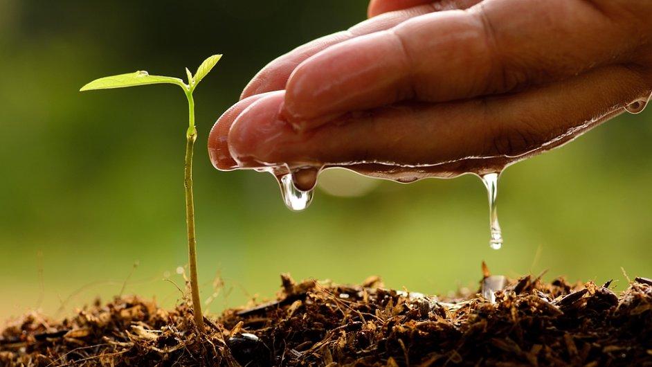 Vyčištěná odpadní voda by mohla doplňovat přirozené zásoby vody v přírodě.