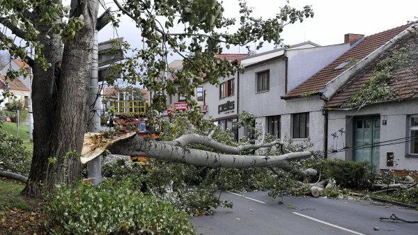 Škody po nedělní vichřici se blíží miliardě korun.