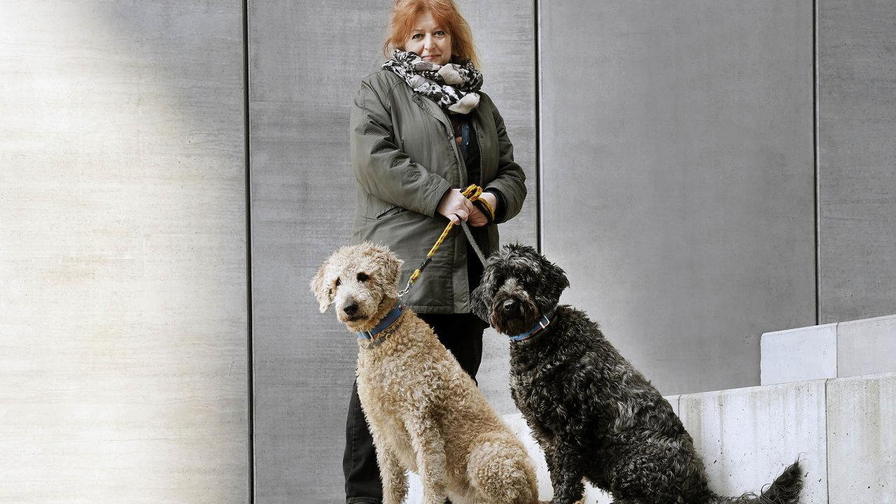 Chovatelka Andrea Tvrdá chová labradoodly, křížence labradora apudla, ideální asistenční psy.