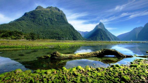 Nový Zéland se stává čím dál tím oblíbenějším útočištěm pro manažery a majitele velkých firem - Ilustrační foto.
