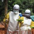 Prob�haj�c� epidemii eboly m�e podle WHO podlehnout a� 20 tis�c lid�