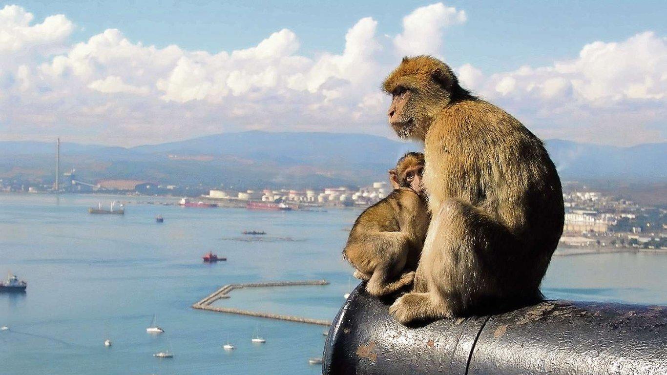 Gibraltar ubráníme!