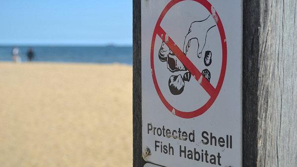 Na australské pláži mušle nesbírejte.