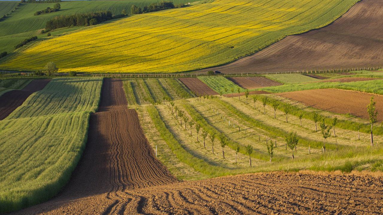 Na napravení křivd, které původním vlastníkům půdy způsobil komunistický režim, stále čeká zhruba 45 tisíc restituentů.