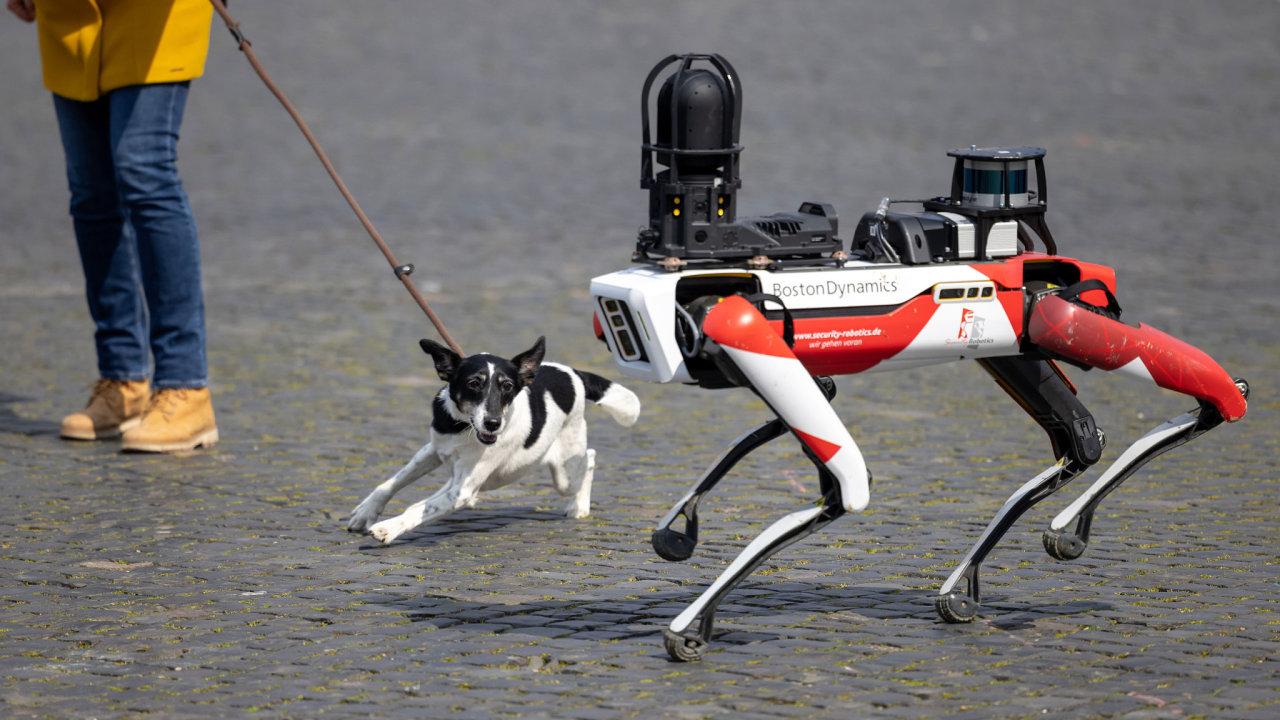 Robotický pes má kamery asenzory, dokáže se pohybovat vprostoru apřekonat nebo odstranit menší překážky.