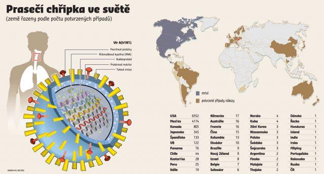 Prasečí chřipka ve světě