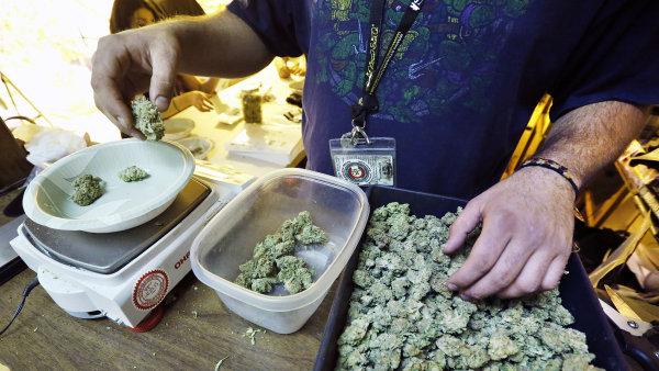 Pěstování marihuany by mohlo být v Mexiku brzy legální - Ilustrační foto.