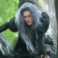 Film Into The Woods p�ijde do kin p�ed V�noci.