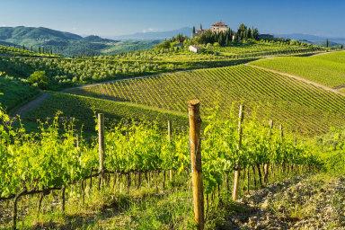 Toskánsko je známou vinařskou oblastí v Itálii, která je zase jedním ze tří největších producentů vína v Evropě.