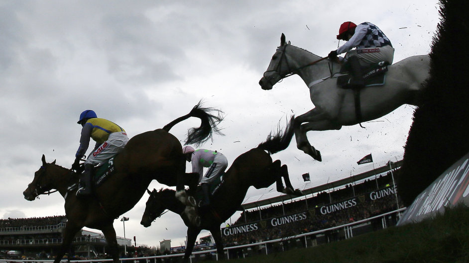 Cheltenhamský festival je ukázkou toho nejlepšího z koňských dostihů