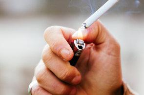 Domácí zvířata léčbu astmatu nezhoršují. Největší vliv má kouření, ale také vzdělání rodičů