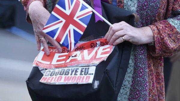 Žena drží plakát podporující brexit