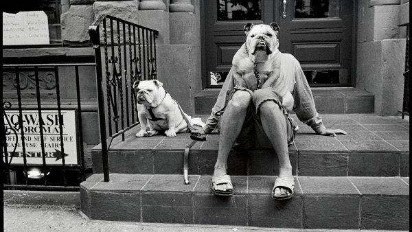 Elliott Erwitt je jedním z nejpozoruhodnějších představitelů pouliční fotografie. Byl zařazen do dokumentu Everybody Street.