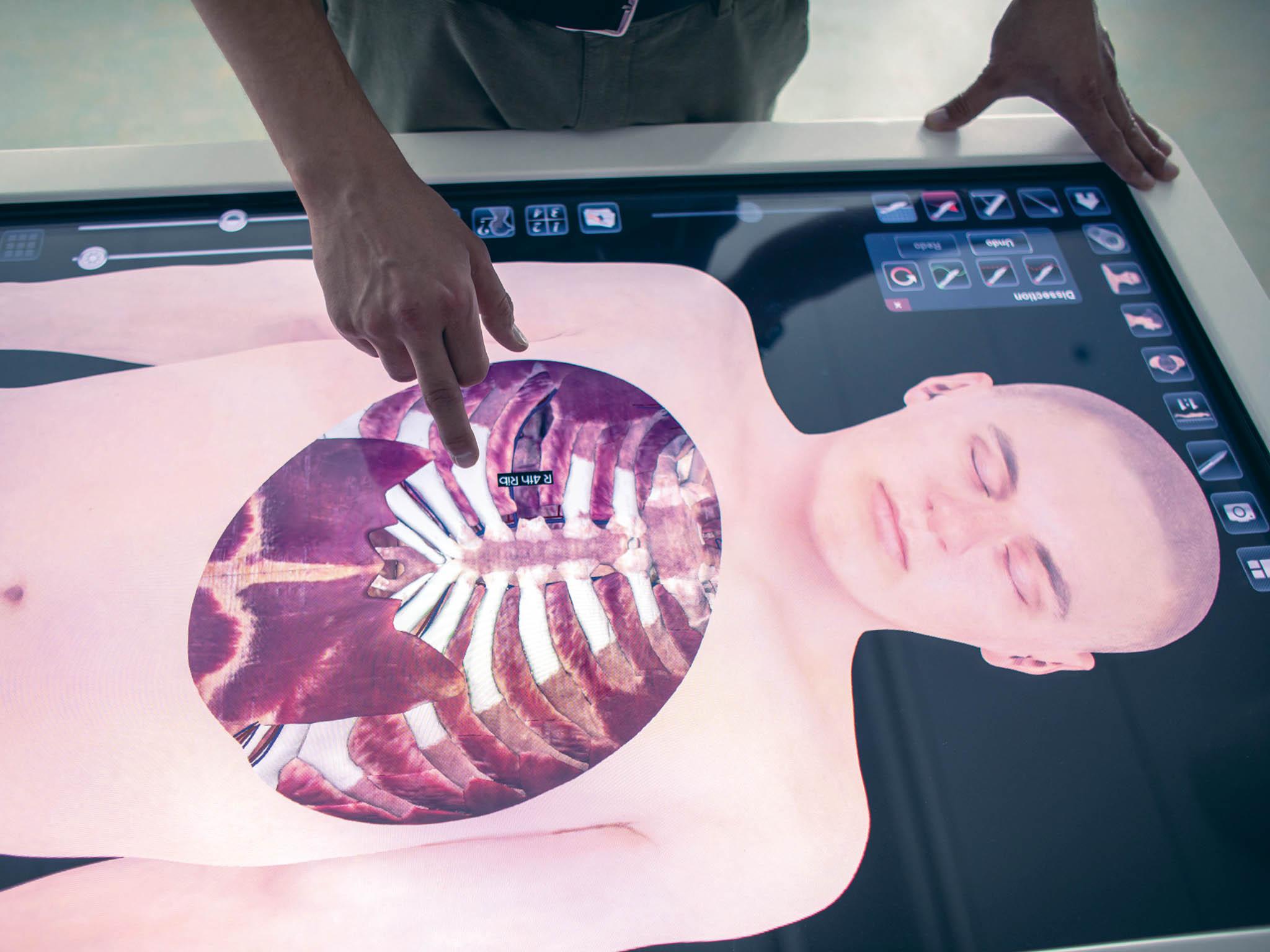 """Virtuální pitevní stůlumožňuje studentům provádět různé řezy tělem azkoumat jednotlivé orgány """"sčistýma rukama""""."""