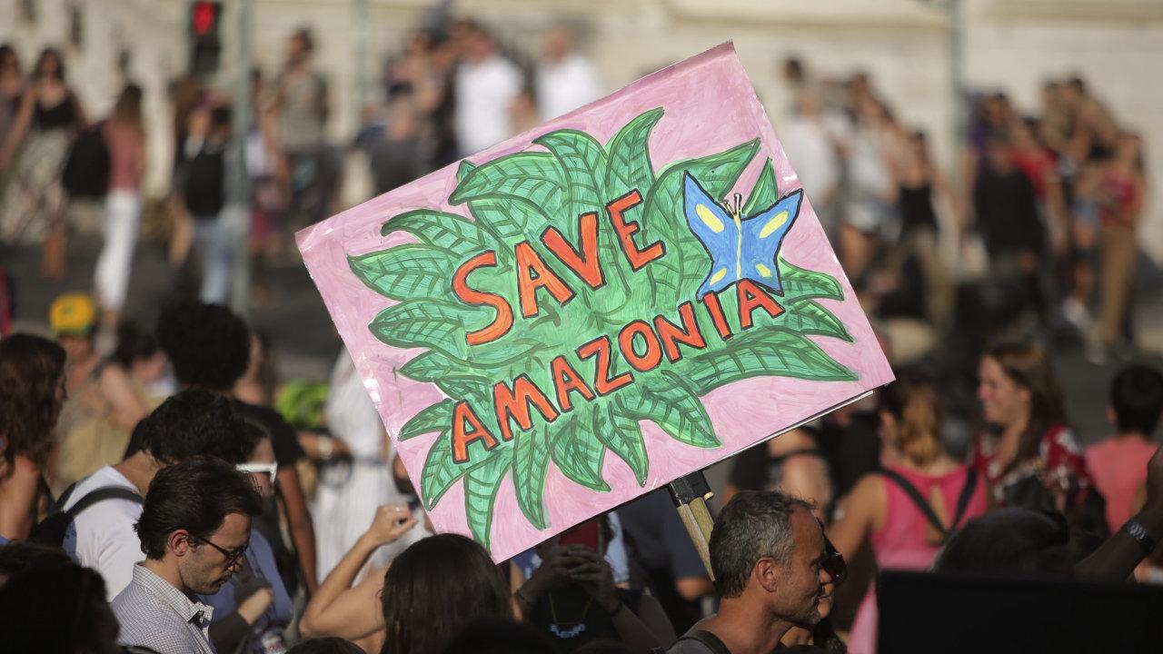 """""""Zachraňte Amazonii"""". Přimět brazilskou vládu k okamžité akci se lidé snaží i demonstracemi."""