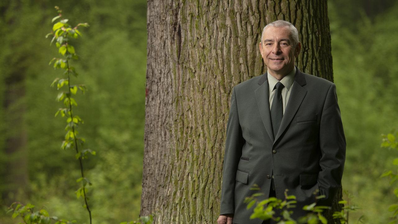 Krnovský dubneměl být pokácen, a už vůbec ne prodán jako palivové dřevo, říká Vladimír Krchov, ředitel lesního a vodního hospodářství Lesů ČR.