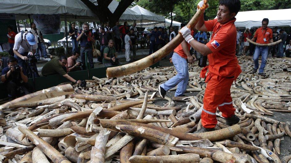 Obchod se slonovinou, ilustrační foto
