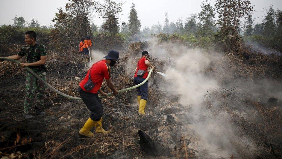 Hašení požárů v Pulang Pisau Palangkaraya v Indonésii.