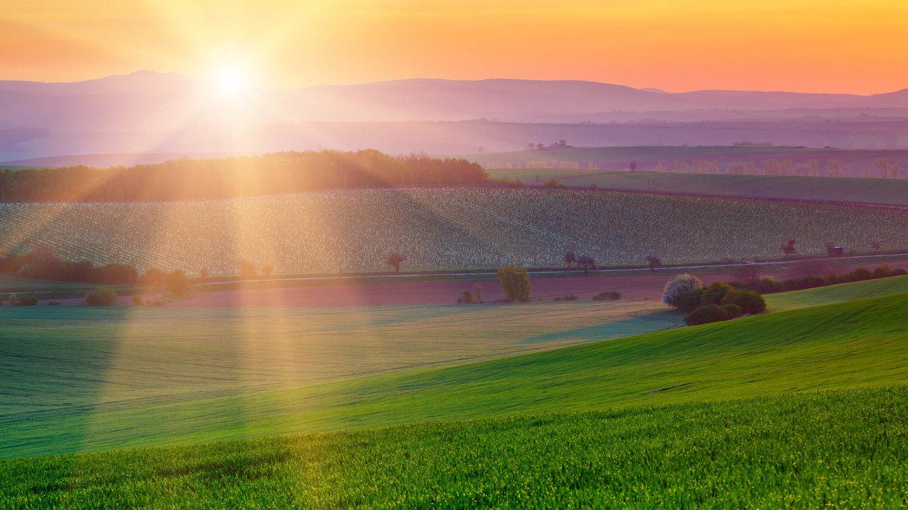 Farmářům svelkými poli hrozí odpříštího roku ztráta dotací.