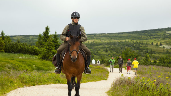 Už druhým rokem vyjíždějí do terénu strážci KRNAP na koních.