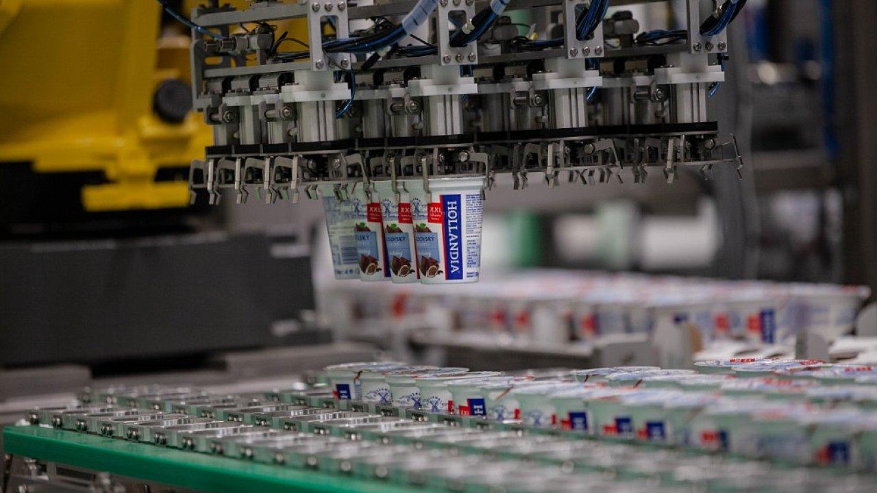 Robot vyskladňuje jogurty v Hollandii.