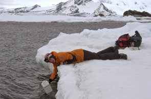 Led plný poznání: Sodtávajícím ledem mizí iklíčové informace oklimatu ahistorii, které se vněm ukládaly tisíce let anelze je získat zjiných zdrojů.