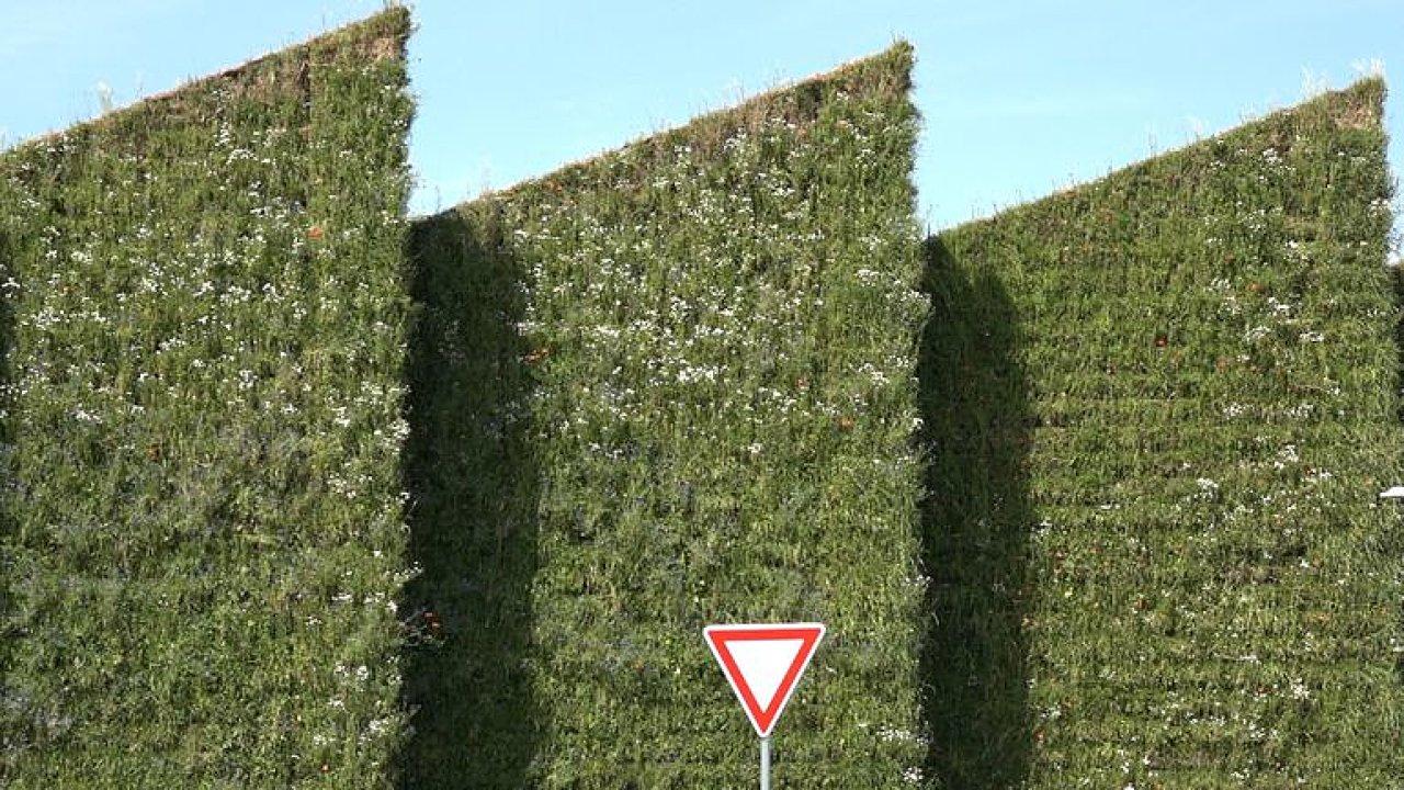 Stěny a střecha z rostlin. Prohlédněte si unikátní živou výrobní halu