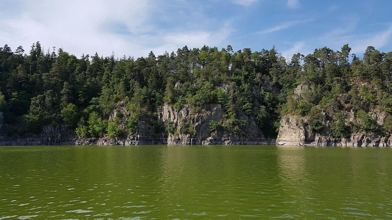 Zelený Orlík: Jihočeská nádrž na Vltavě je už několik let plná sinic.