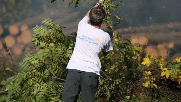 Podpora dobrovolnictví v ČR roste, ilustrační foto