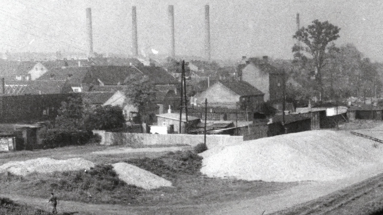 Průmyslové předměstí neslo doroku 1960 jméno Holešovice-Bubny, až pak se oficiálně stalo jen Holešovicemi.