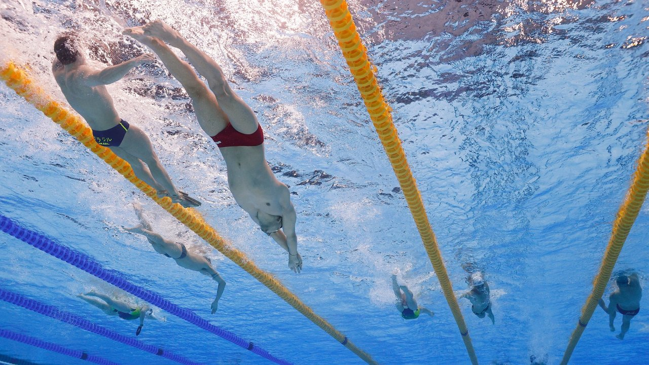 Swimmers during training REUTERS Stefan Wermuth
