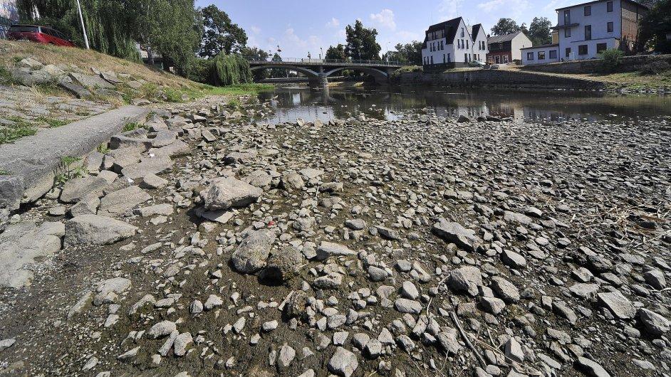 Loňské teplé léto přineslo do Evropy výrazné sucho, což připomnělo dlouhodobý problém s ubývajícími zásobami vody ve světě. (Na snímku vyschlý vodní tok na české Vysočině.)