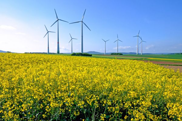 Loni v Česku nepřibyla jediná větrná elektrárna.