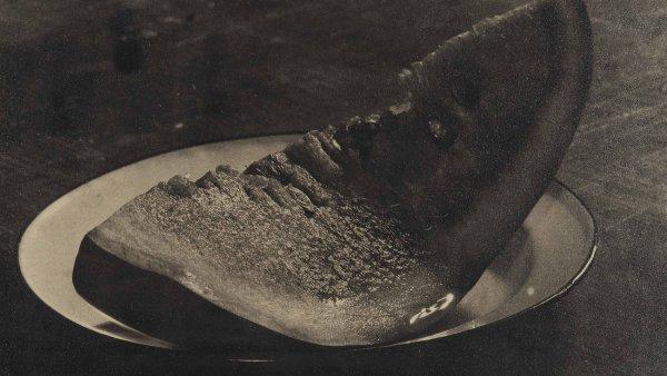 Josef Sudek: Meloun, 1951