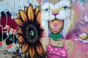 Ji�n� Amerika je streetartovou galeri� pod �ir�m nebem. Ulice jsou pln� barev i kontroverzn�ch t�mat