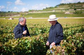 Prvn� anglick� u�ebnice pro vina�e vznikla v �esku: Auto�i nav�t�vili skoro pades�t nejlep��ch vinic v Evrop�