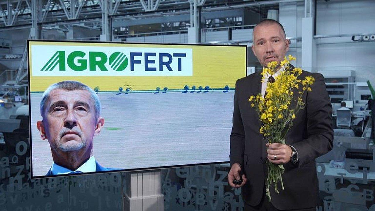 Česko je žluté a ještě dlouho bude. Zjistili jsme, proč řepka z polí jen tak nezmizí