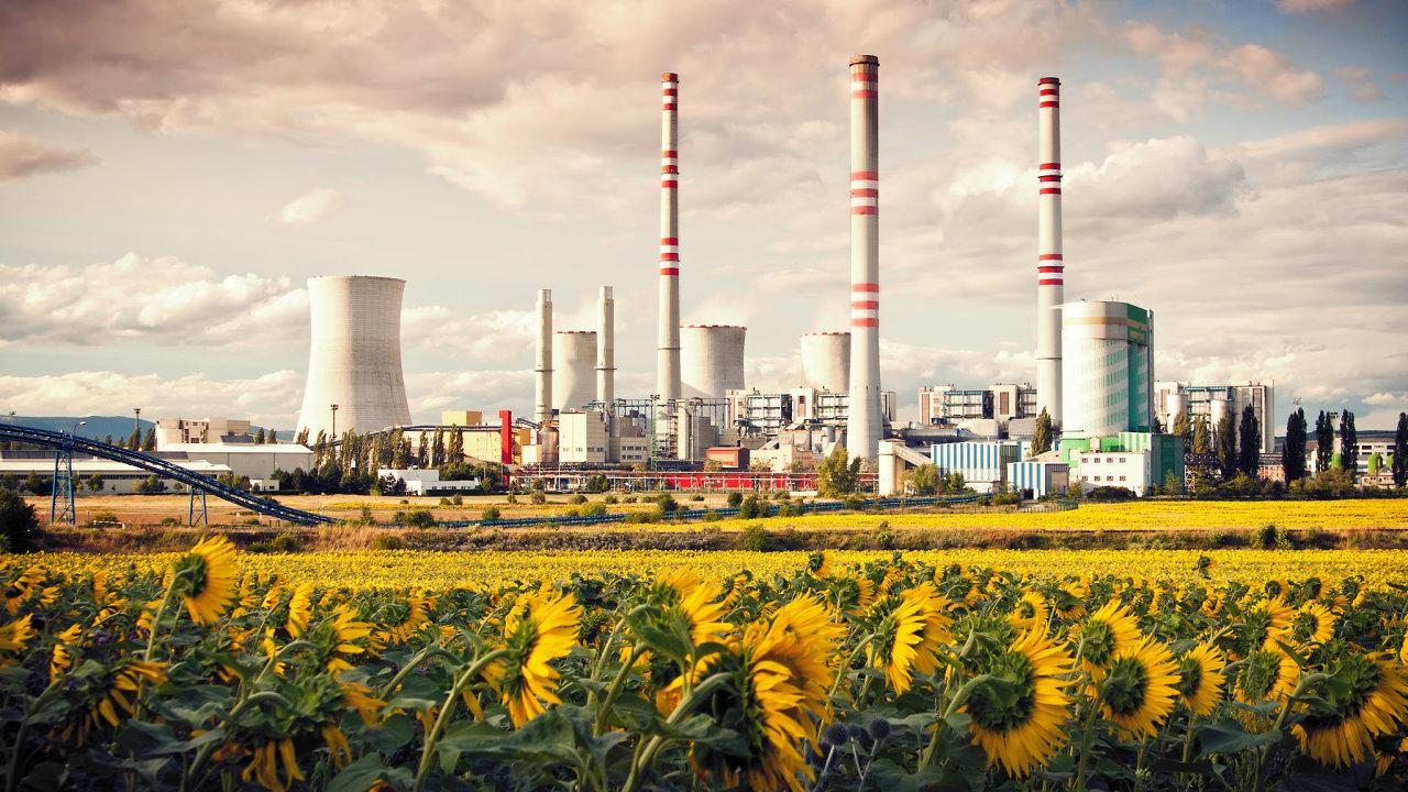 Českou tepelnou elektrárnu Počerady v létě doplňují lány slunečnicových polí.