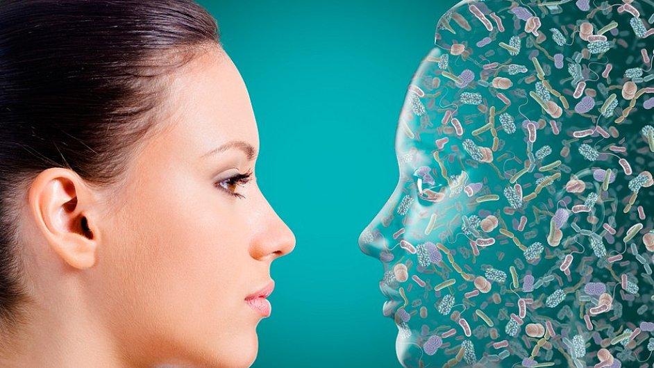 V lidském organismu je až čtrnáctkrát více bakterií než buněk našeho vlastního těla.
