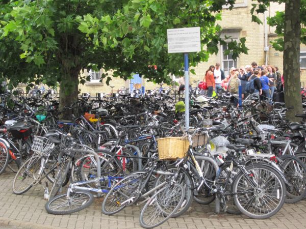 Cyklisté v Cambridge