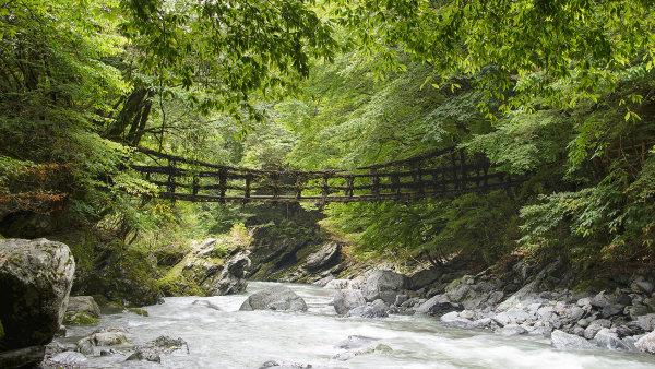 Celkem se dochovaly t�i mosty z vinn� r�vy, Iya Kazurabashi je t�m nejdel��m.